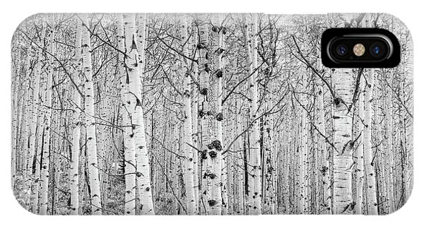 IPhone Case featuring the photograph Aspens In High Key by John De Bord
