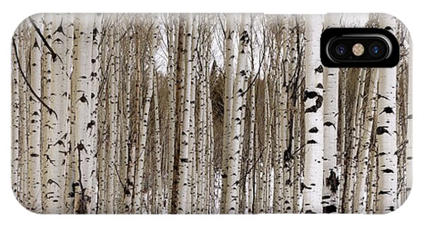 New Mexico iPhone Case - Aspens In Winter Panorama - Colorado by Brian Harig