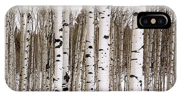 Scenery iPhone Case - Aspens In Winter Panorama - Colorado by Brian Harig