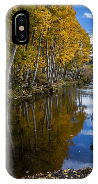 Sierra Nevada iPhone Case - Aspens Reflected by Cat Connor