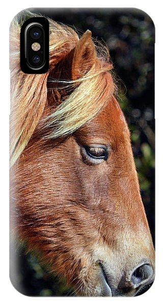Assateague Horse Sarah's Sweet Tea Right Profile IPhone Case