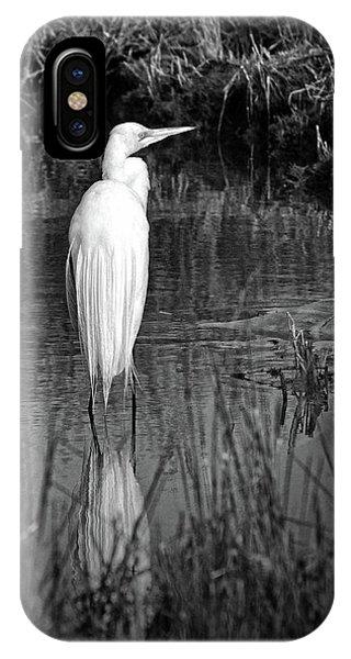 Assateague Island Great Egret Ardea Alba In Black And White IPhone Case