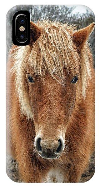 Assateague Island Horse Miekes Noelani IPhone Case