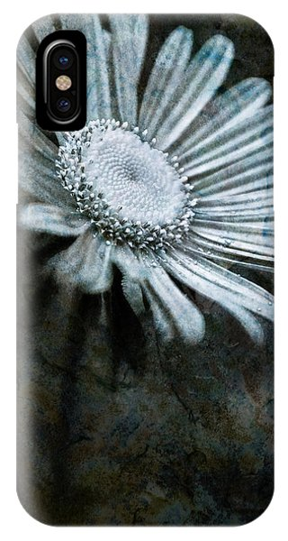 Aster On Rock IPhone Case