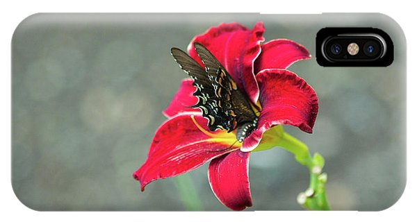 IPhone Case featuring the photograph At One With The Orchid 2 by Brian Hale