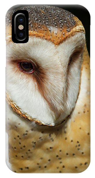 Athena The Barn Owl IPhone Case