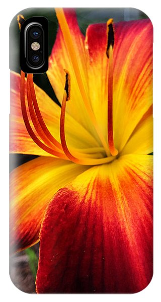IPhone Case featuring the photograph Athenagoras Of Syracuse by Jeff Iverson