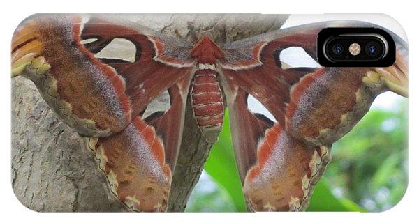 Atlas Butterfly IPhone Case
