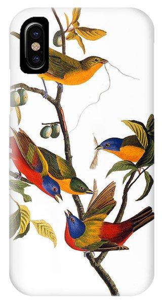 Audubon iPhone X Case - Bunting, 1827 by John James Audubon