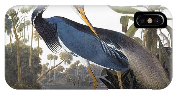 Audubon Heron, 1827 IPhone Case