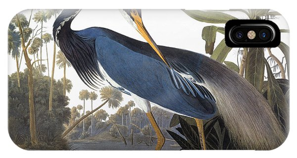 Audubon Heron, 1827 IPhone Case