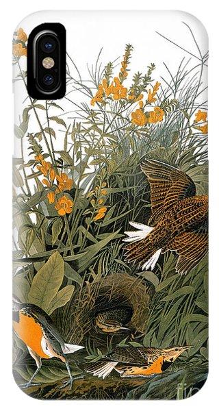 Audubon: Meadowlark IPhone Case