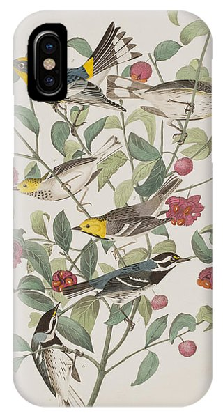 Warbler iPhone Case - Audubons Warbler Hermit Warbler Black-throated Gray Warbler by John James Audubon