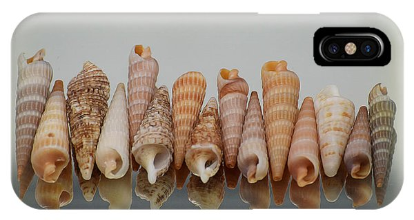 Auger Shells IPhone Case
