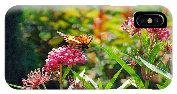 August Monarch IPhone Case