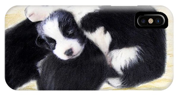 Australian Cattle Dog Puppies IPhone Case