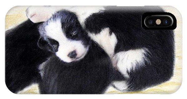 Australian Cattle Dog Puppies IPhone Case