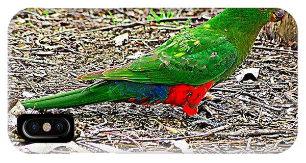 iPhone Case - Australian King Parrot by Blair Stuart