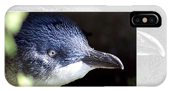 iPhone Case - Australian Wildlife - Little Penguin by Holly Kempe
