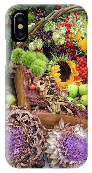Sunflower Seeds iPhone Case - Autumn Abundance by Tim Gainey