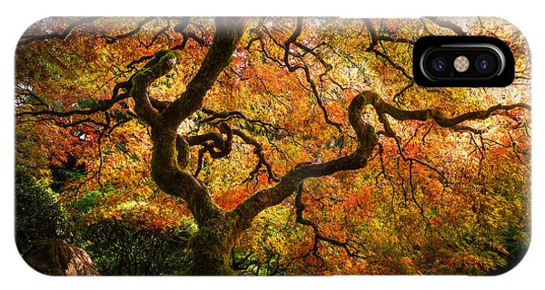 Autumn Arrival IPhone Case