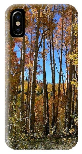 Autumn Aspen Grove Dixie National Forest Utah IPhone Case