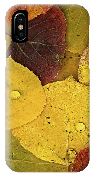 Autumn Aspen Leaves IPhone Case