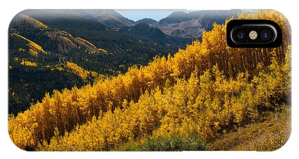 Autumn Aspen Near Castle Creek IPhone Case