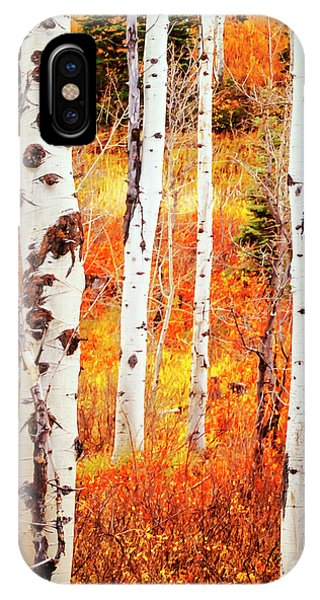 IPhone Case featuring the photograph Autumn Aspens by David Millenheft