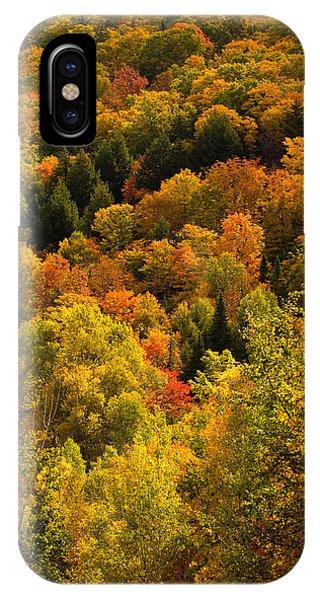 Autumn At Acadia IPhone Case