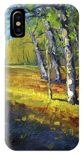Autumn At Bloedel IPhone Case