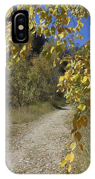 Autumn At Iron Creek IPhone Case