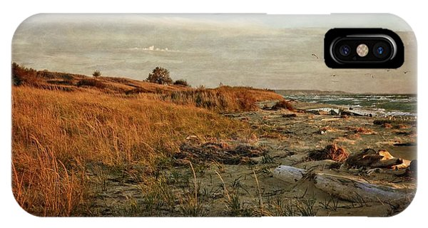 IPhone Case featuring the photograph Autumn At The Mouth Of The Big Sable by Michelle Calkins