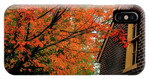 Autumn At The Window IPhone Case