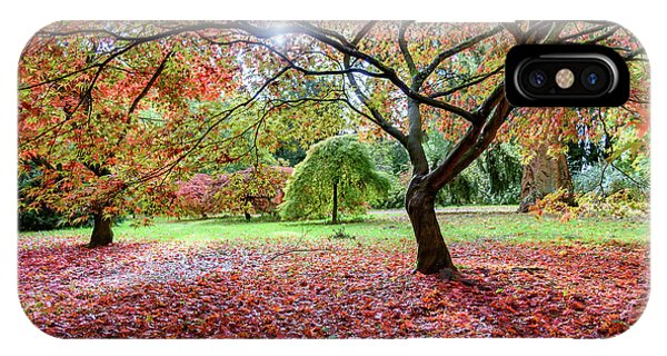 Autumn At Westonbirt Arboretum IPhone Case