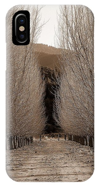 Autumn Bares Her Trees IPhone Case