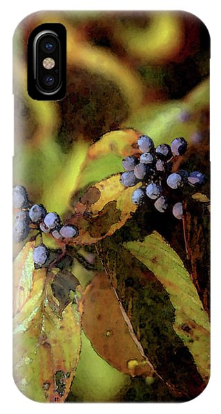 Autumn Berries 6047 Dp_2 IPhone Case