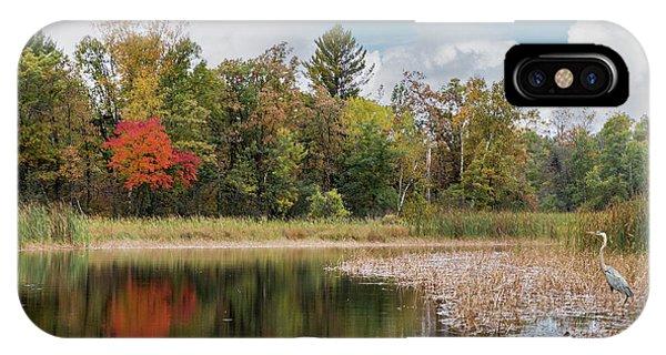 Autumn Blue Heron IPhone Case