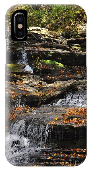 Autumn Brook IPhone Case