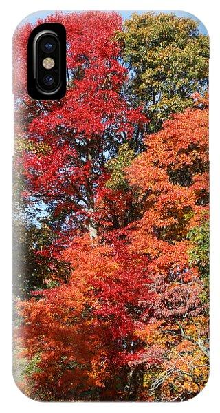Autumn Color Spray IPhone Case