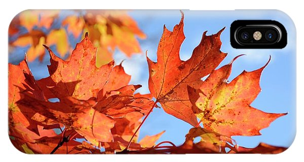 IPhone Case featuring the photograph Autumn Colors 2 by Angie Tirado