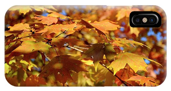 IPhone Case featuring the photograph Autumn Colors 3  by Angie Tirado