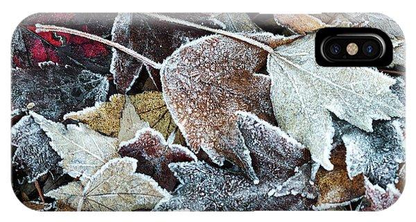 Autumn Ends, Winter Begins 1 IPhone Case