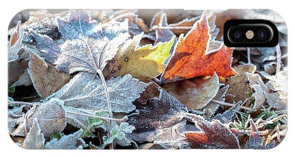 Autumn Ends, Winter Begins 3 IPhone Case