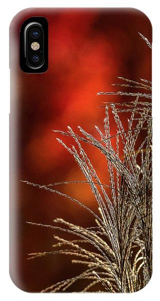 Autumn Fire - 2 IPhone Case