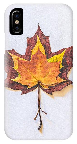 Autumn iPhone X Case - Autumn Fire by Kate Morton