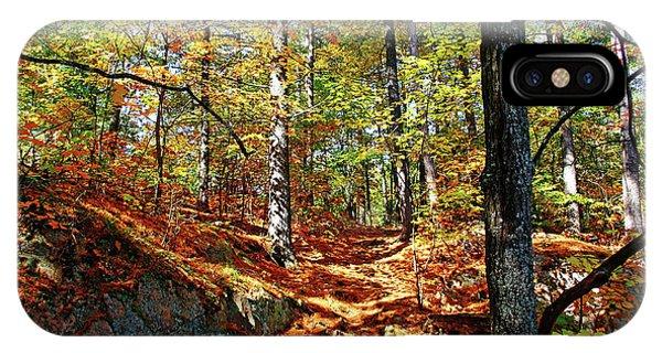 Autumn Forest Killarney IPhone Case
