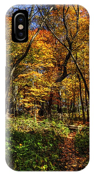 Autumn Forest Path At Johnson's Mound IPhone Case