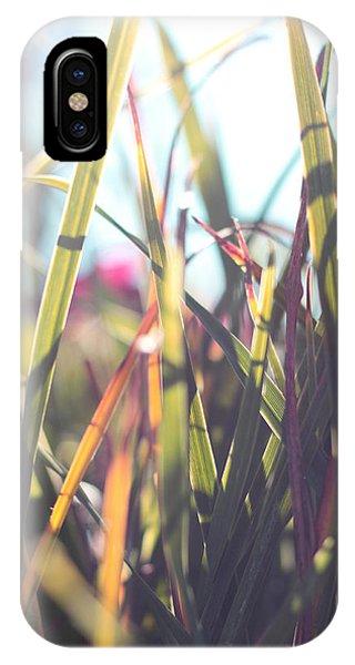 Autumn Grasses IPhone Case