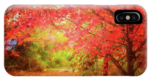 Glorious Foliage On The Rail Trail IPhone Case
